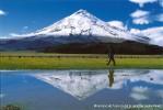 Le Parc national Cotopaxi et le volcan Quilotoa en Equateur: des paradis naturels à quelques kilomètres de Quito