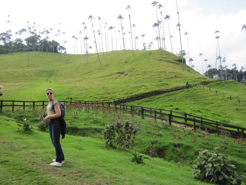 Salento - Vallée de Cocora