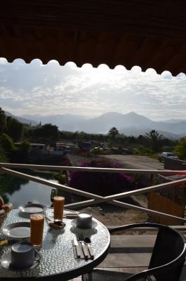 Petit dejeuner devant l'oasis de l'hacienda