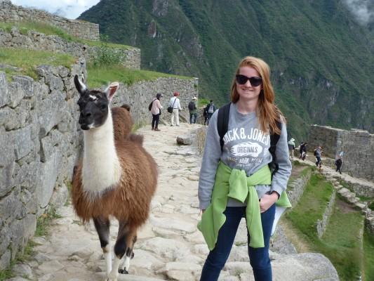 ballade en charmante compagnie au Machu Picchu