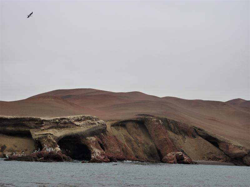 Vers les îles Ballestas